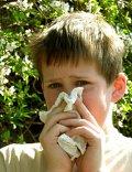 Junge leidet unter Pollenallergie